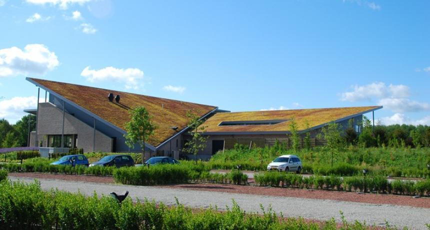 Groen op uw dak? Bestel uw groendak bij Uuldriks Hoveniers uit Groningen
