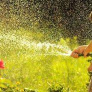 Tuin water geven
